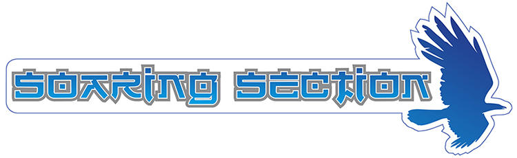 Soaring Section logo